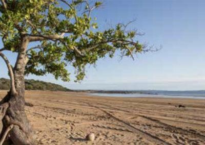 greenhill beach